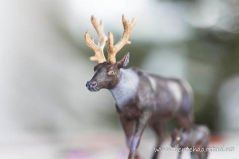 rein_reind_cw-4