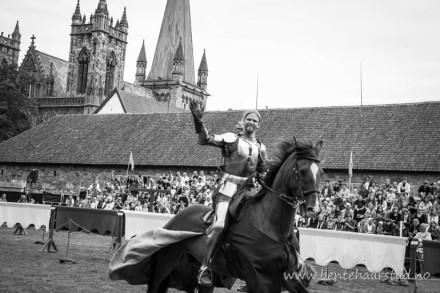 ridder_hest_cw-2-2