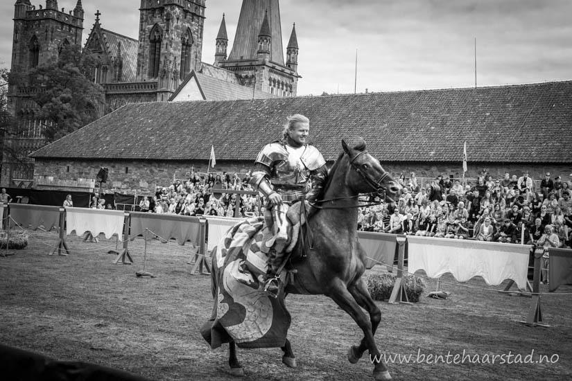 ridder_hest_cw-4