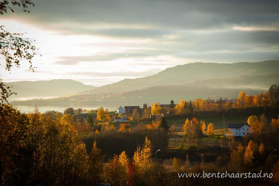 landskap_utkast_cw-2
