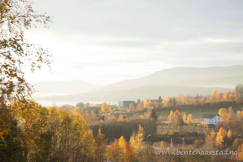 landskap_utkast_cw
