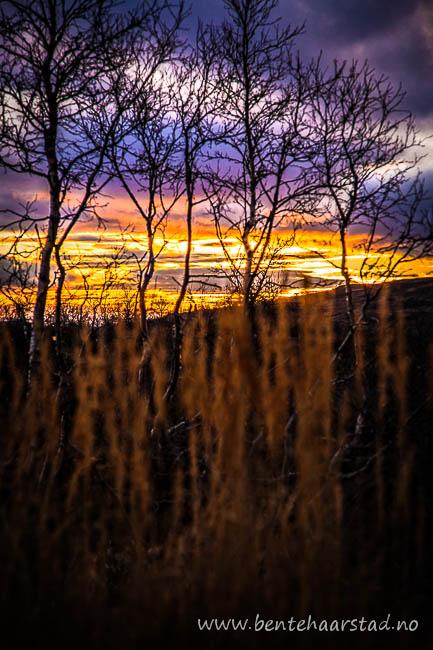 solnedgang_skarpdalen_cw