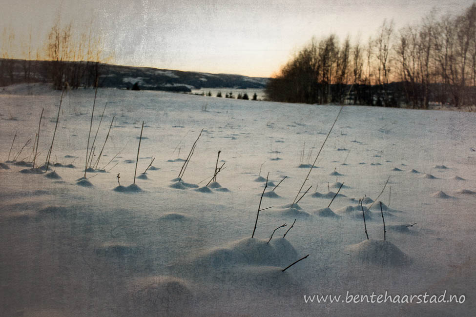 skitur_blek_cw