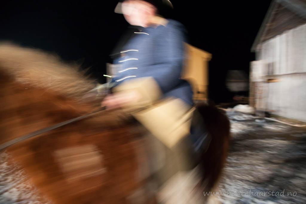 hest_karolin_cw-3