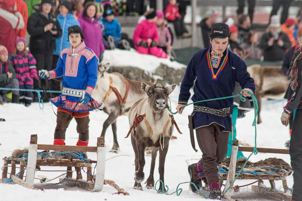 reindeer_racing_cw-5