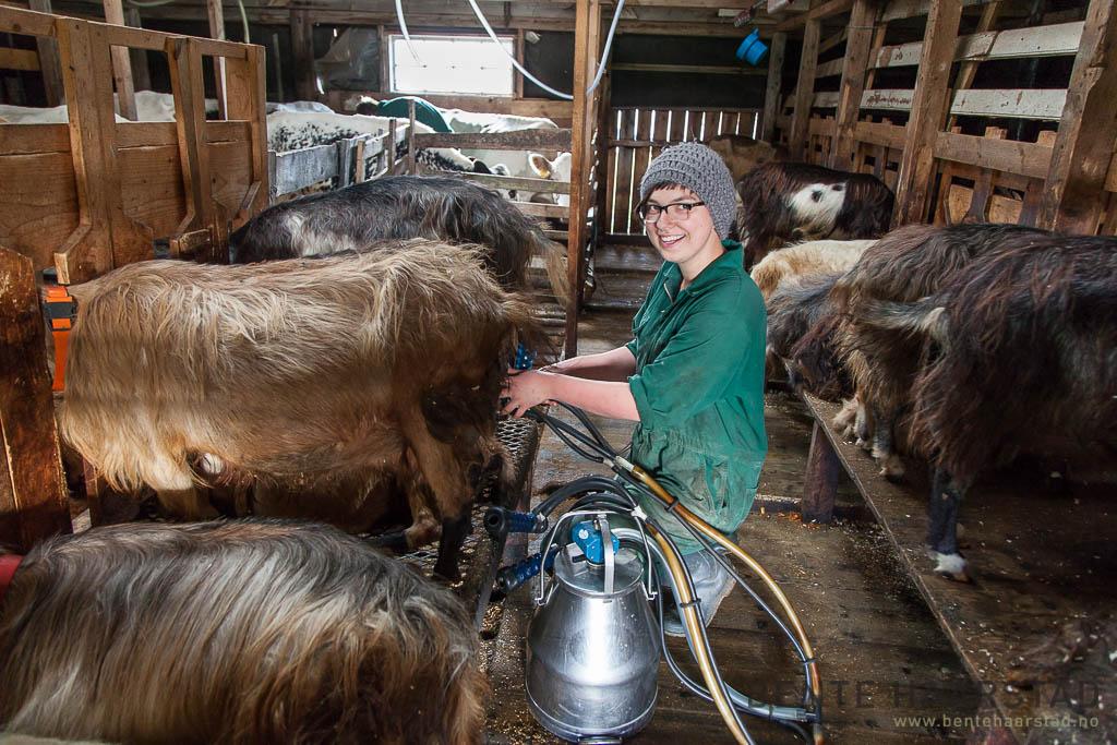 Sara Draxl, Østerrike, praktikant