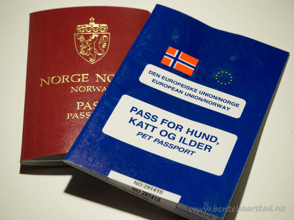 Hundepass, pet passport in Norway.